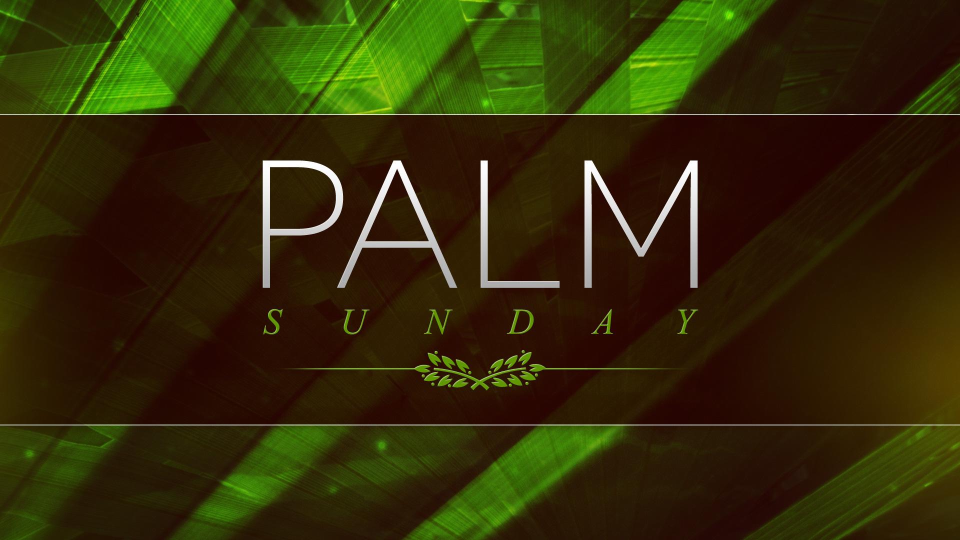 Palm Sunday 2015 Good Shepherd S Chinese Christian Church